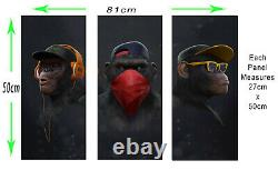 3 Panel Split Modern Wise / Swag Monkeys Abstract Canvas Wall Art Picture Print