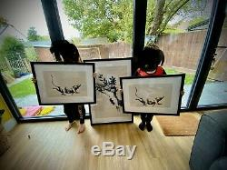 Mint Condition Framed Banksy Gross Domestic Product Flowers print. NOT RAT