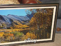 Thomas Mangelsen Rocky Mountain Indian Summer Original Photo 22x68 422/950