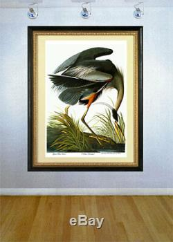 Audubon Grand Héron Bleu 30x44 Audubon Fine Art Print Edition Numérotée À La Main