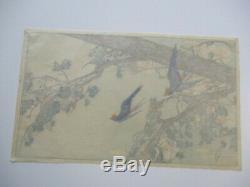 Bertha Lum Woodblock Imprimer Terre Rare De L'art Antique Bluebird Deco Japonais