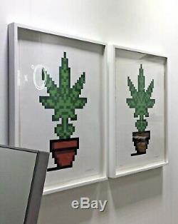 Lot De 2 Space Invader Hollyweed Pot Gravures D'écran Marron Rouge Numéroté Signé Nouveau
